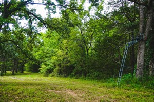 HOME AND CABIN SITE FOR SALE IN SOUTHEAST OKLAHOMA