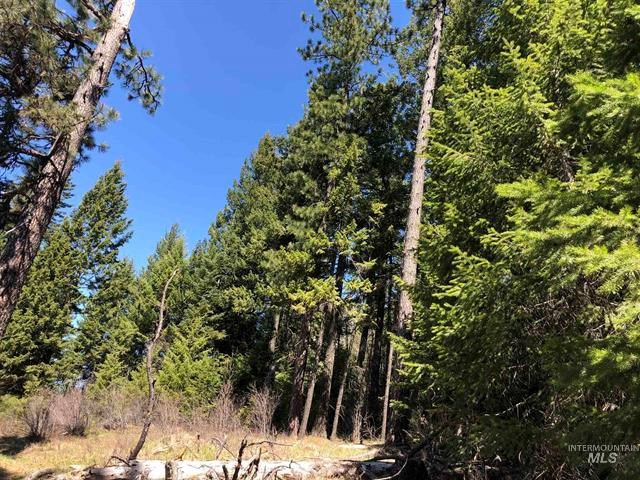 Secluded Recreational Property For Sale