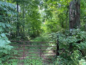 RECREATIONAL PROPERTY FOR SALE NEAR BARREN RIVER LAKE IN KY.
