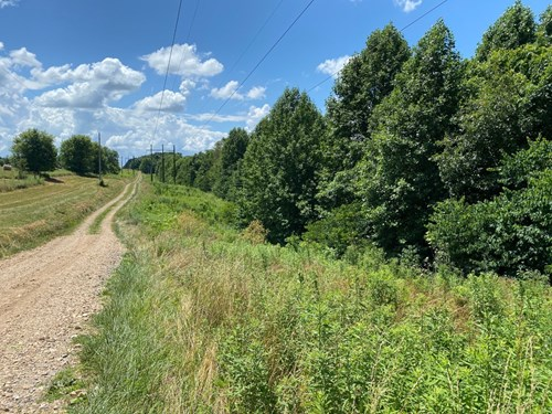 10 acres of vacant land located near Lafayette, Tn.
