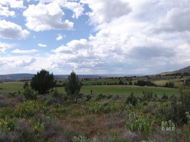20 acres For Sale in Modoc County, California.