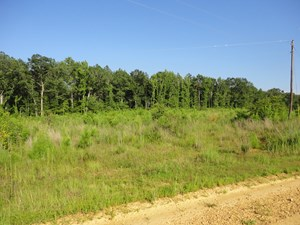 LAND FOR SALE LINCOLN COUNTY MS LOYD STAR SCHOOL DISTRICT