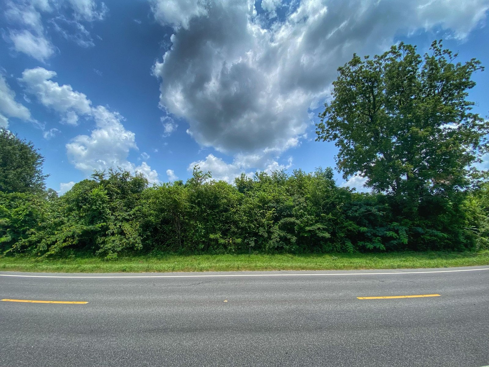 LOOKING FOR THE PERFECT LOCATION TO BUILD YOUR DREAM HOME?