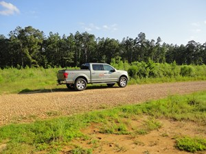 LAND FOR SALE LINCOLN COUNTY TIMBERLAND MISSISSIPPI