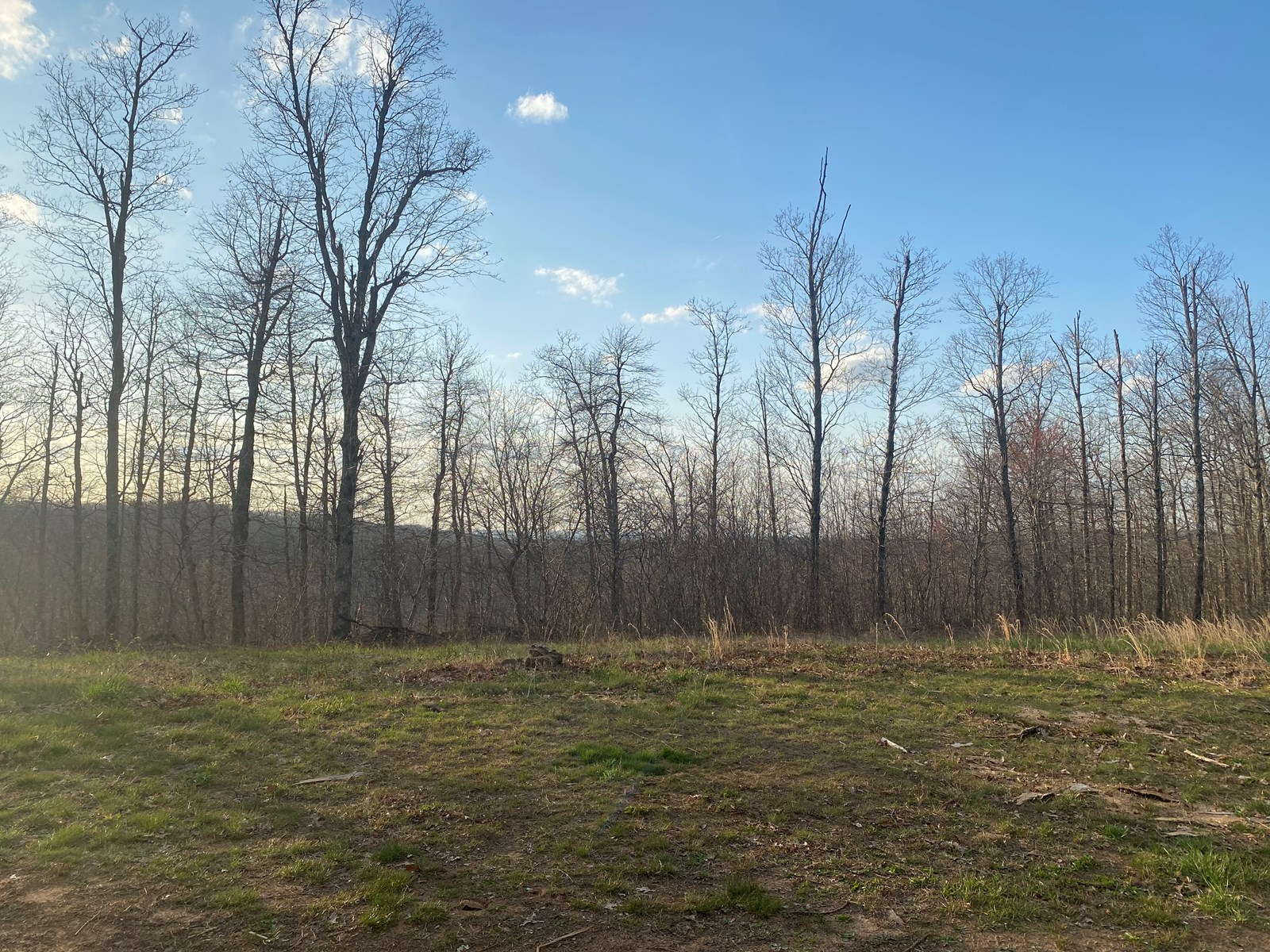 8 acres connected to national forest