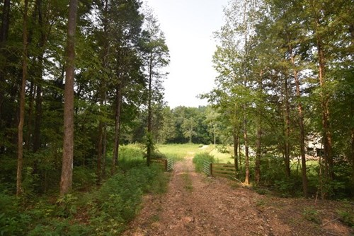 90 Acres of hunting land Linden TN $162,000