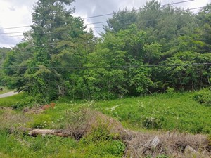 LOT FOR SALE IN BENT MOUNTAIN VA