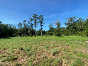 2.60 ACRES CLEARED FOR ONLY $50,000!!!!