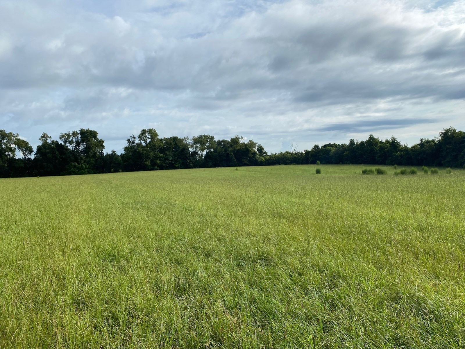 10 ACRES HIGHWAY FRONTAGE FOR $80,000!!!!