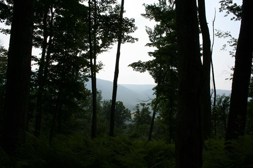 Valuable land for sale on Jack Mountain east of Monterey VA