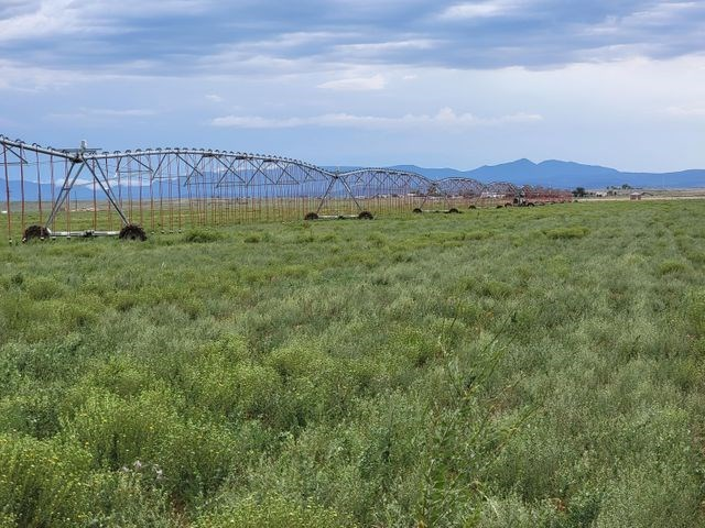 120± Acres of Licensed Irrigated Farmland For Sale in NM