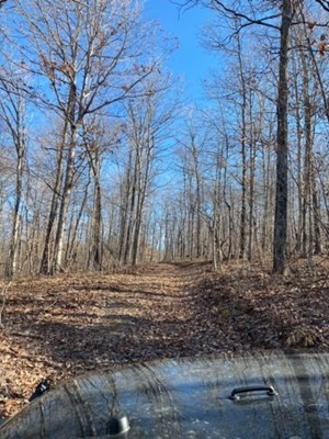 MISSOURI OZARKS HUNTING PROPERTY WITH ELECTRIC
