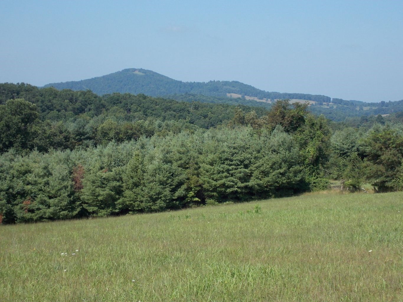 Land for Sale in Floyd County VA