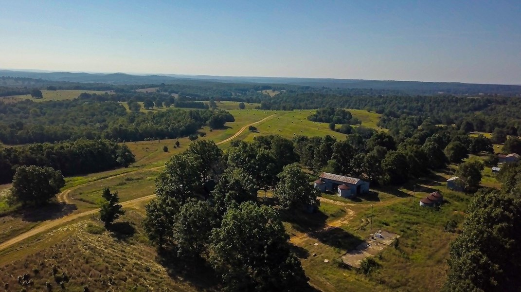 Cattle Farm for Sale!