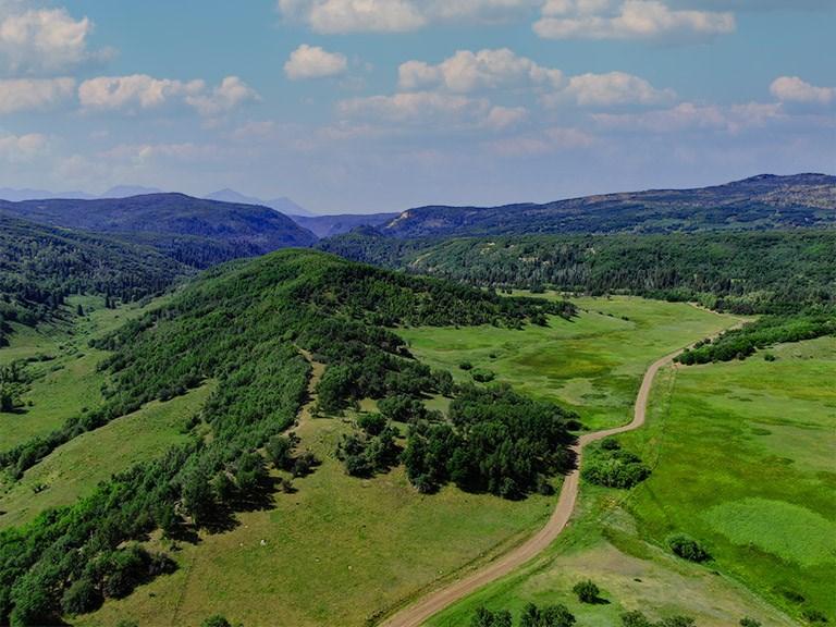Mountain Recreation Property Paonia Colorado