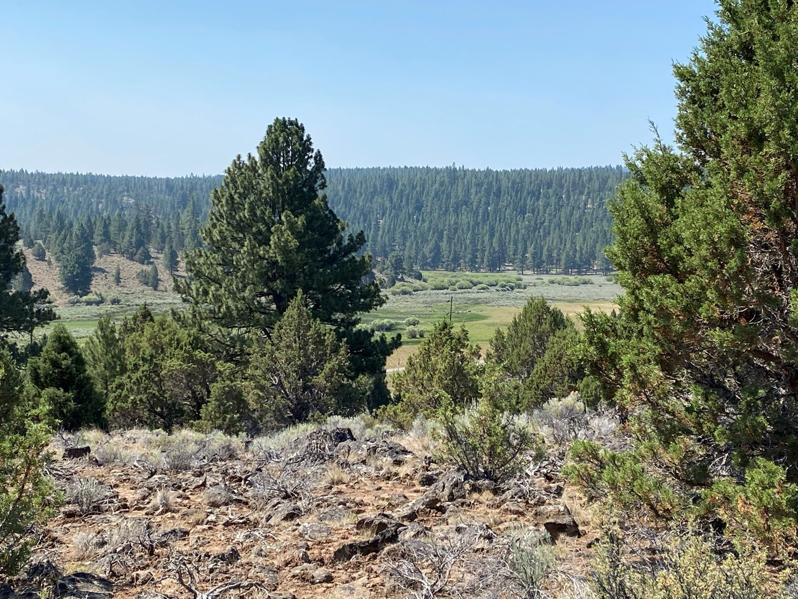 37+/- Acres on Hwy 140 in Lakeview, OR