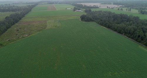 Farmland with Home in Jackson County, FL For Sale