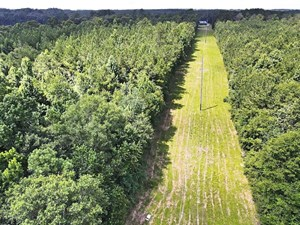 31 +/- ACRES RECREATIONAL OR HOME SITE LAND FOR SALE SW MS