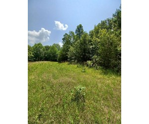 Surveyed Land for Sale in Southern Missouri
