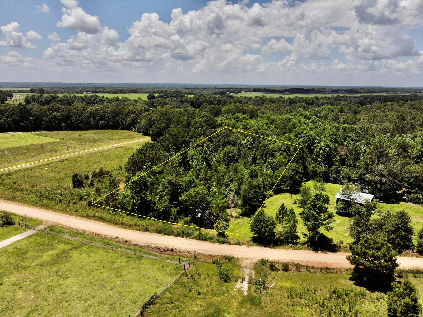 Land for sale Samson, AL