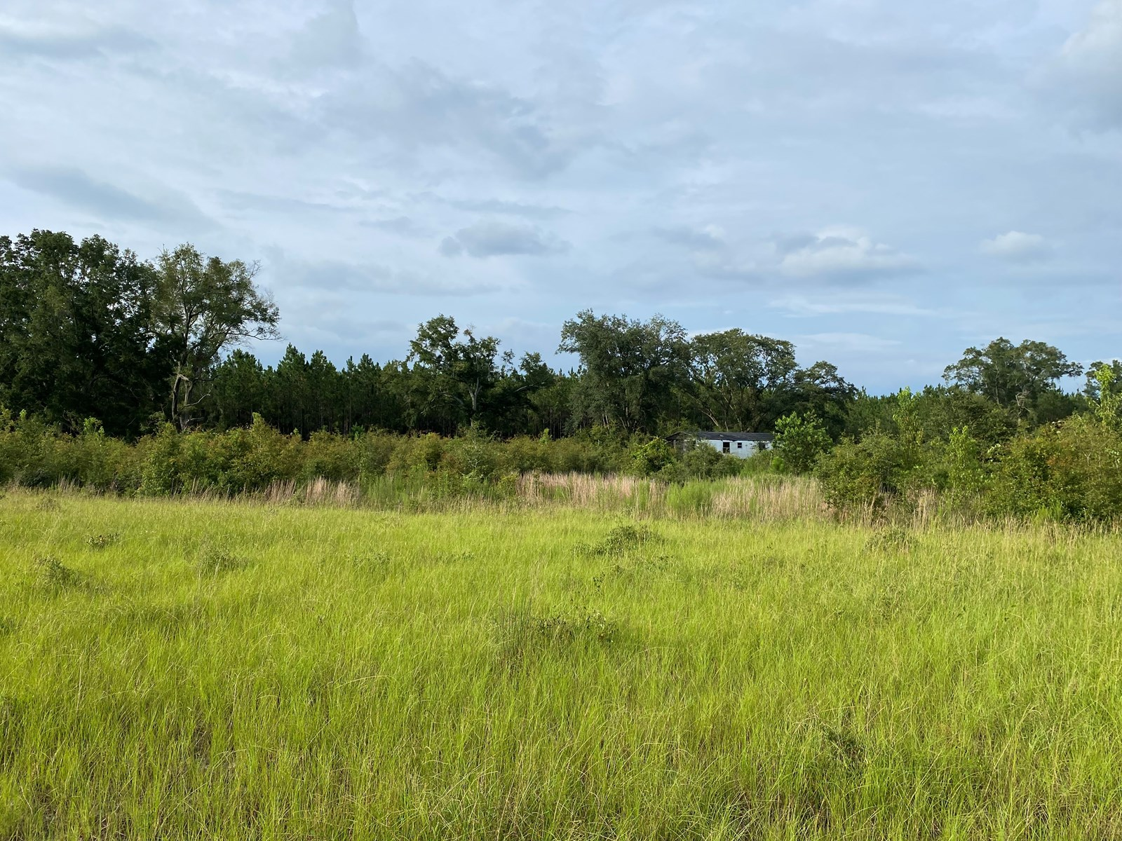 10 ACRES IN SUWANNEE COUNTY FOR ONLY $80,000!!!