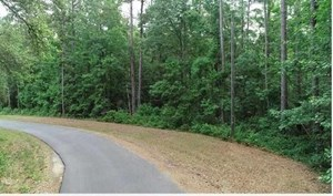 LAND FOR SALE NEAR TALLAHASSEE AND MONTICELLO FLORIDA