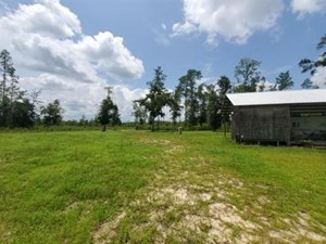 CREEK FRONT PROPERTY IN TELOGIA FLORIDA WITH HOME STARTED