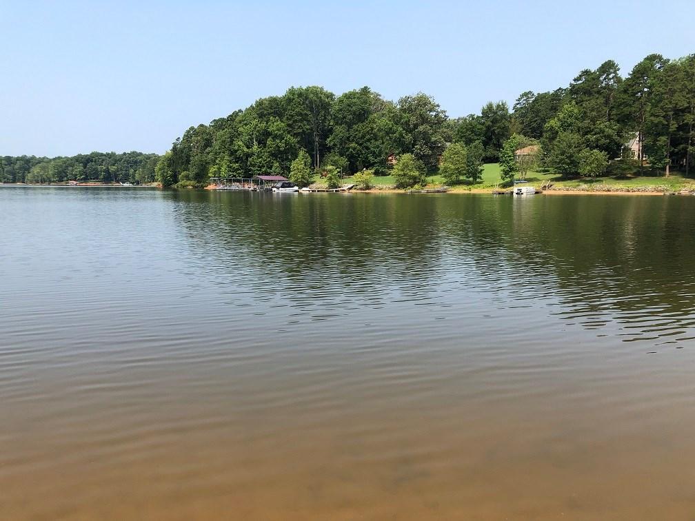 Egret Escape On Buggs Island Lake, VA