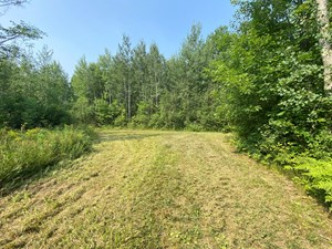 40 ACRES FOR SALE IN NORTHERN MN HUNTING LAND FOR SALE