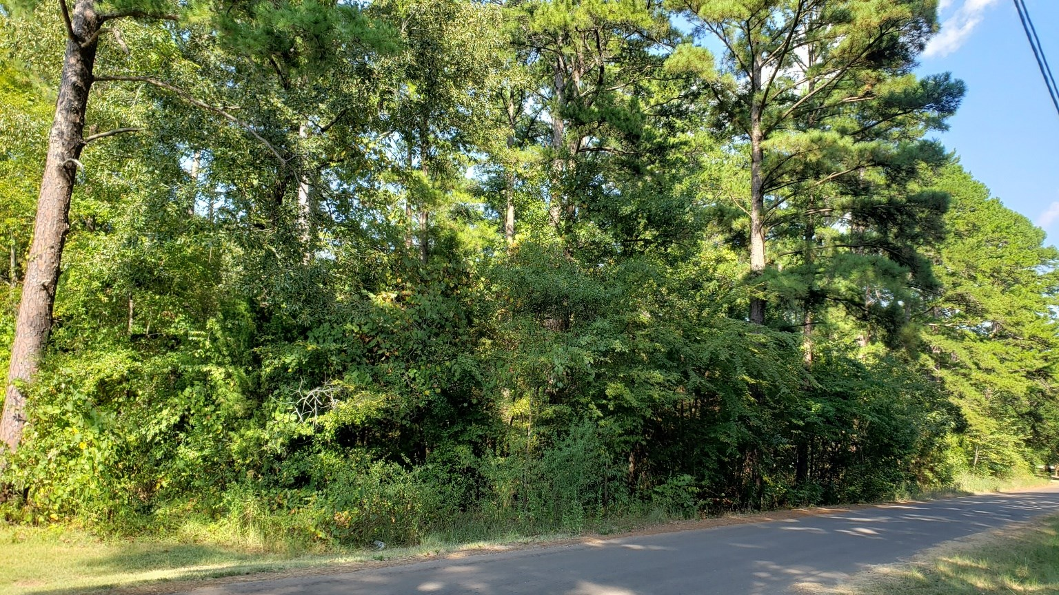 DOUBLE LOT FOR SALE IN ESTABLISHED LAKE PALESTINE COMMUNITY