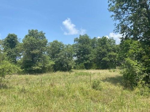 Hunting Land for Sale Near Bull Shoals Lake