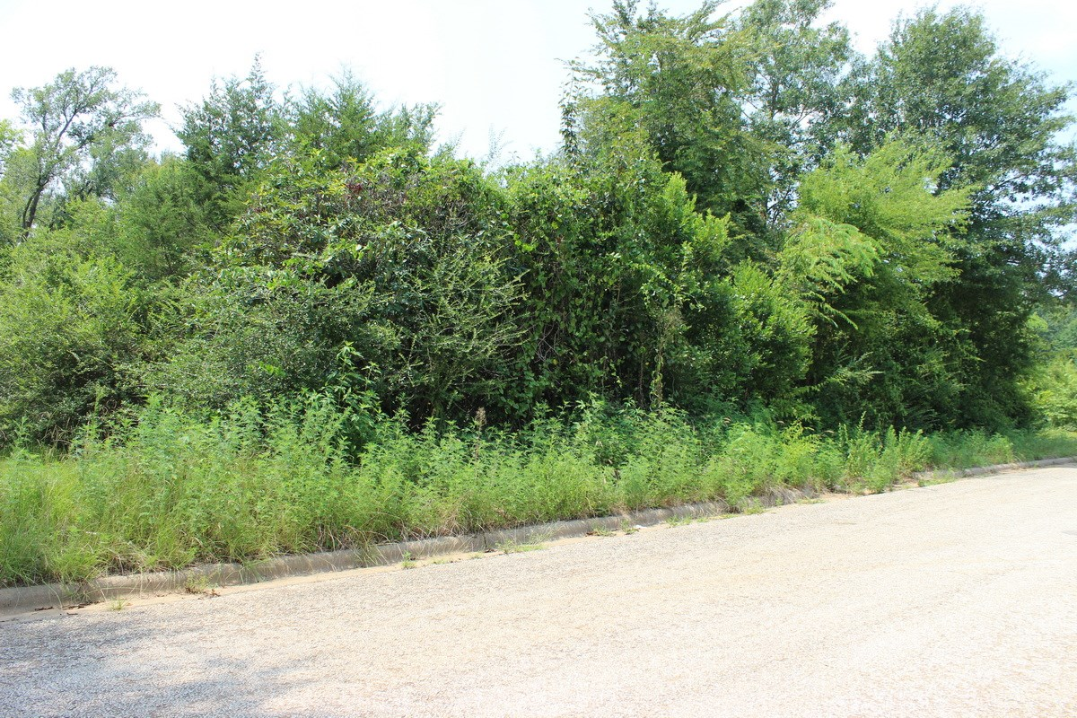 Residential and/or Commercial Lot For Sale in Gladewater, TX