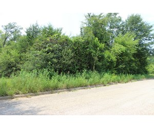 Residential or Commercial Lot for sale in Gladewater