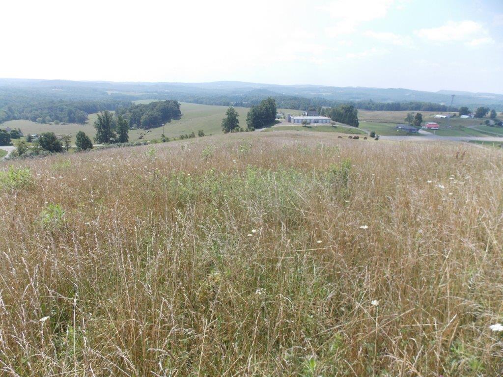 Beautiful Property for Sale in Laurel Fork VA