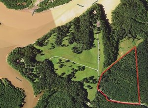 TIMBERLAND INVESTMENT IN SOUTHERN VA