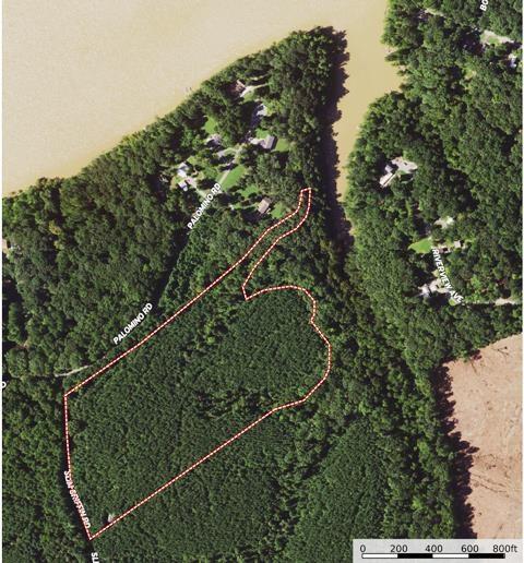 17 Acre Pine Plantation On Kerr Lake, VA