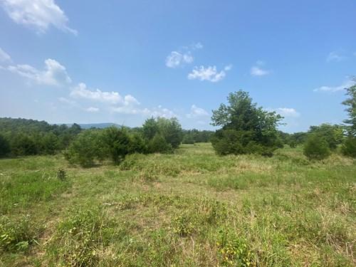 Land for Sale Southeast Oklahoma- Latimer County - Oklahoma