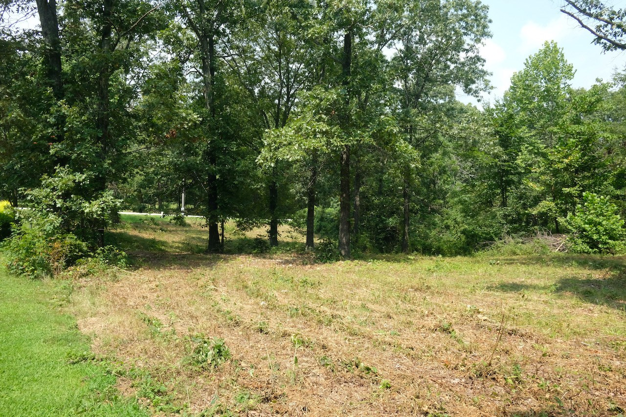 Residential Lot for Sale in Town - West Plains, MO
