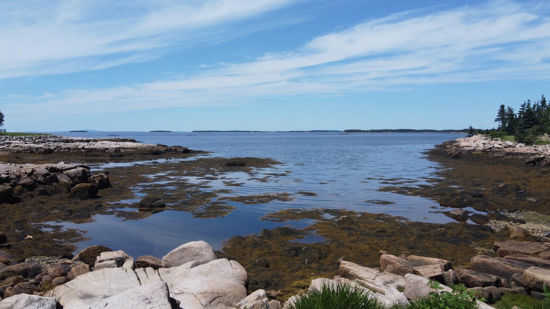 Private Island in Beals, Maine