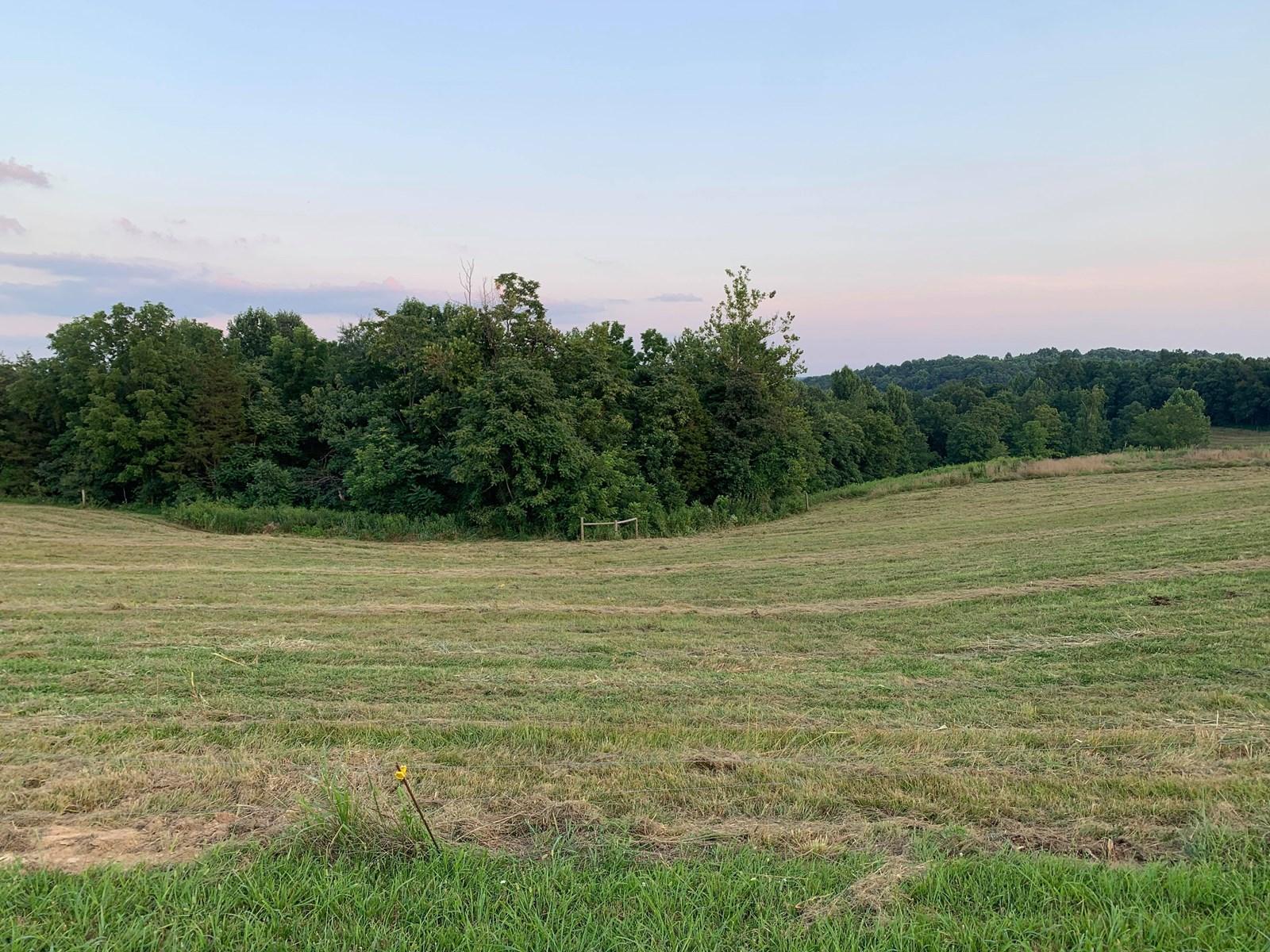 .94 +/- Building Lot in Burkesville, Kentucky