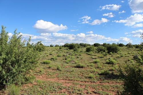 PENDING SALE Large Acreage for Sale with no HOA, Seligman AZ