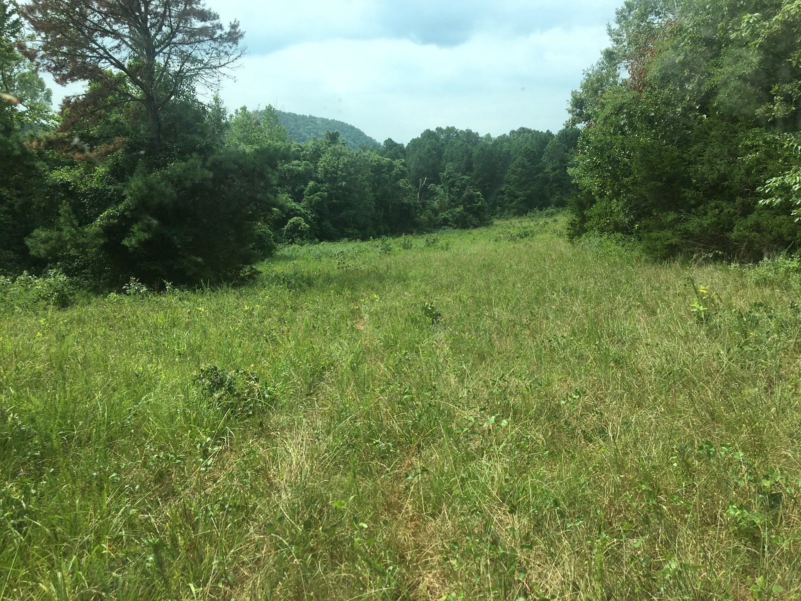 Recreational Property for sale in the Ozark Mountains!