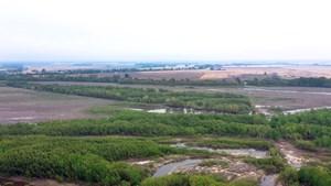 MS RIVERFRONT LAND FOR SALE - DUCK, DEER, & TURKEY HUNTING