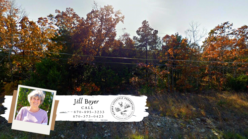 Lot on Golf Course in Horseshoe Bend, AR