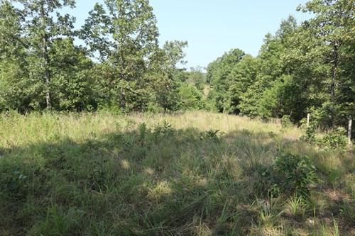 Hunting Land for Sale in Salem, AR