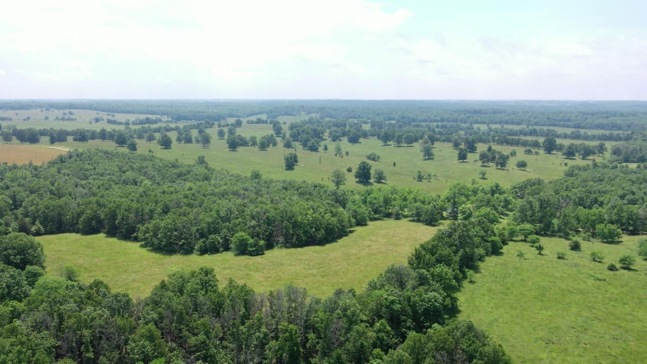 20 Acres in West Plains