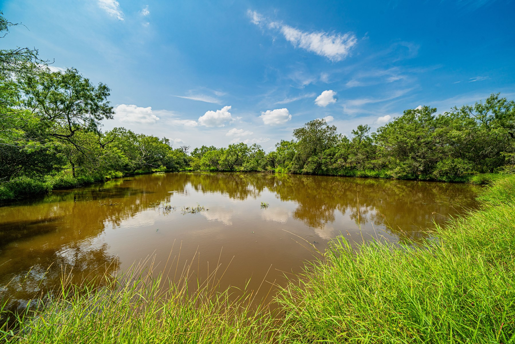 Little Big Lake Ranchette!  11+ Acres in Devine, TX!