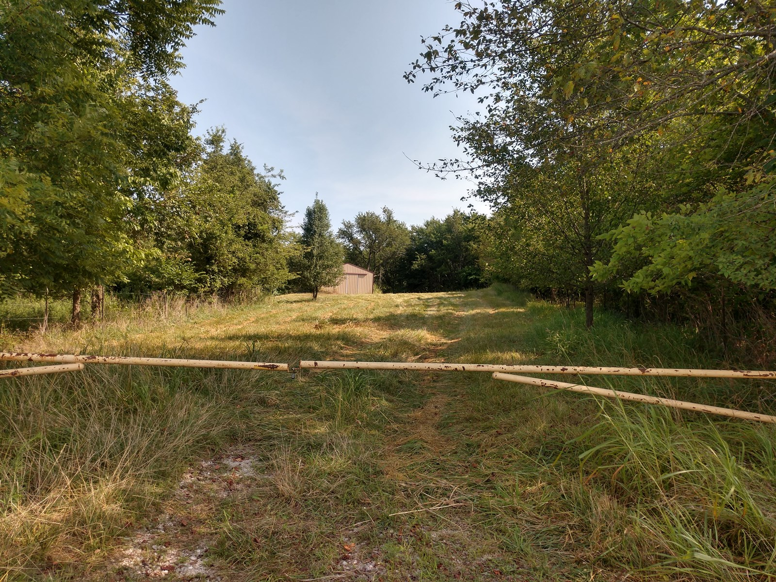 Secluded, Wooded Land with Utilities Ready To Build On