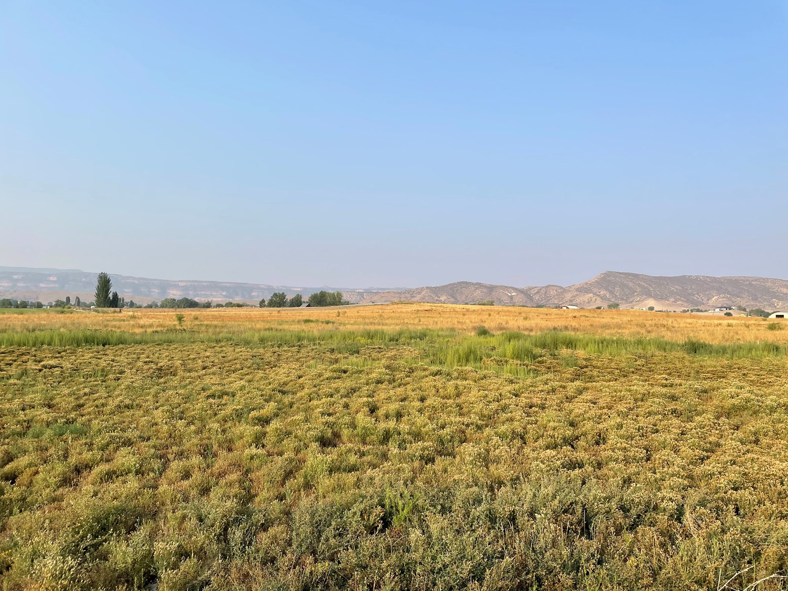 Colorado Irrigated Land for Sale