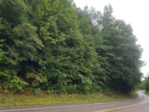 FOR SALE 28.7 TN ACRES TIMBER WELL SEPTIC SPRINGS PONDS